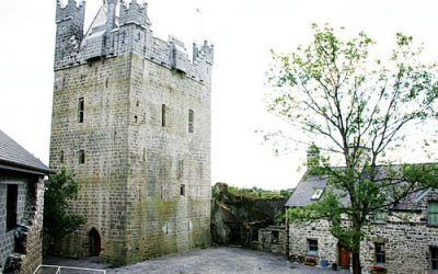 Claregalway Castle using Soil Renew on their grounds