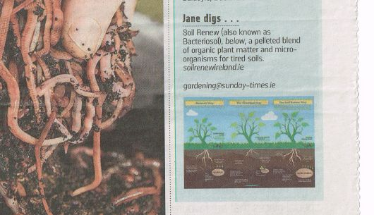 Jane Powers 'digs' Soil Renew in the Sunday Times